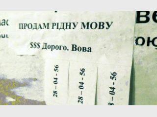 Литвину мстят за подписание языкового закона. ФОТО